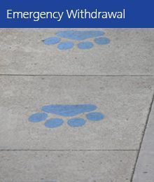 Emergency Withdrawal